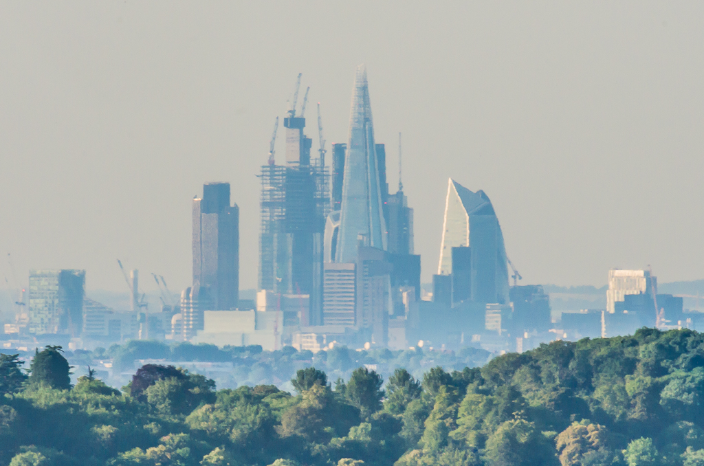 City of London from Reigate Hill